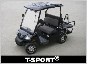 Custom Golf Carts By Acg Inc